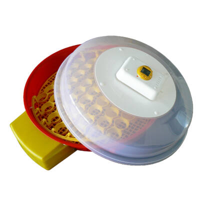IO-104 Automata tojáskeltető kijelzővel